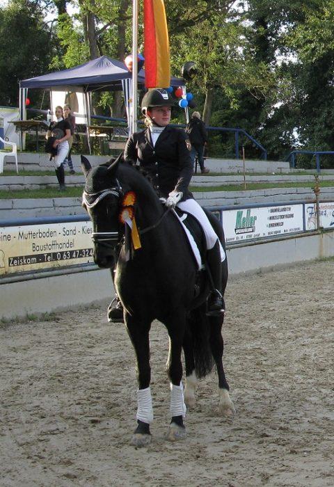Pony_Foerder_L_Noelken